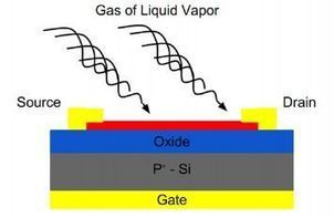 Researchers Build Atomically-Thin Gas and Chemical Sensors | Amazing Science | Scoop.it