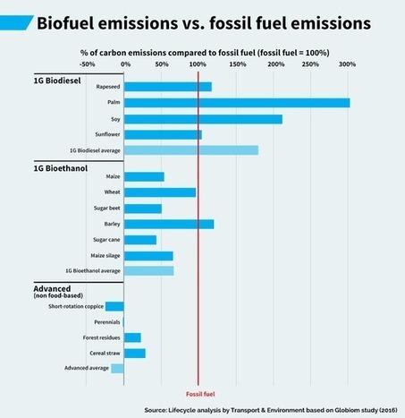 Les biocarburants émettent plus de CO2 que l'essence et le diesel | Citizen Com | Scoop.it
