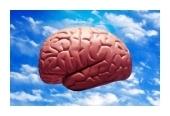 Mindmapping - het maximale uit je brein halen | Googlesprokkels | Scoop.it