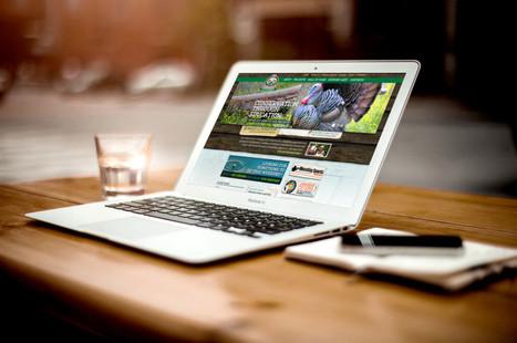 Home - Adelaidewebdesign's website | SEO Adelaide | Scoop.it