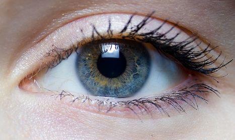 Être aveugle deviendra-t-il bientôt un lointain (mauvais) souvenir ? | Civilisation 2.0 | Scoop.it