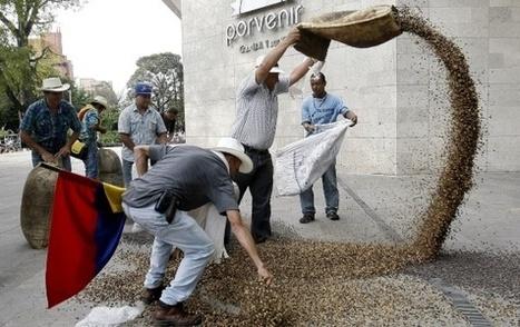 La llegada de Starbucks agita el mercado interno del café en Colombia | Opinion | Scoop.it