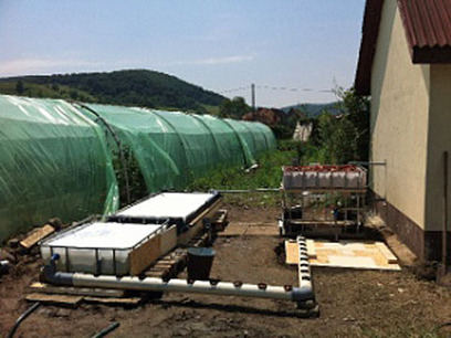Romania church installs aquaponics system - NCN News   Aquaponics World View   Scoop.it