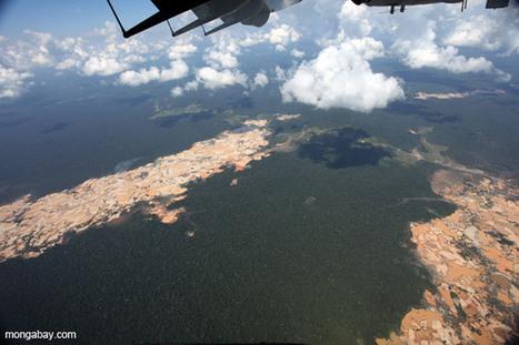 High gold price triggers rainforest devastation in Peru | Environmental news from Peru | Scoop.it