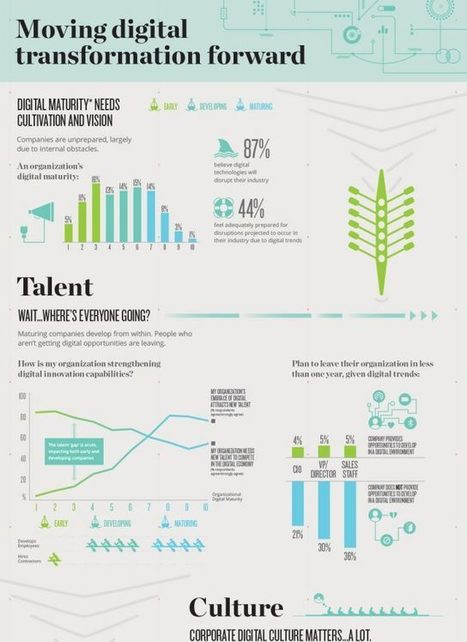 (infographic) Moving digital transformation forward | E-transformation | Scoop.it