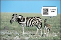 Intégrer le QR code dans votre communication | Blog Ideo Compo | SEO et Social Media Marketing | Scoop.it
