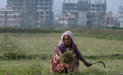 Extreme armoede in wereld daalt pijlsnel - De Standaard | Melody den Haan verzorgingsstaat | Scoop.it