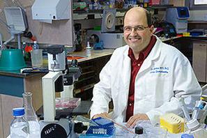 INNOVACION MEDICA: Convierten células de la piel en células ... | ayudas biomecanicas | Scoop.it