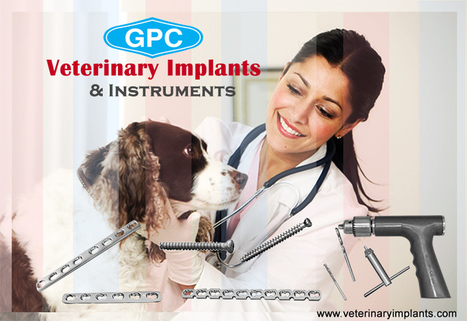 Orthopedic Instruments & Implants used by Veterinarians | Orthopedic Implants | Orthopaedic Surgical Instruments | Orthopedic Plates & Screws | Scoop.it