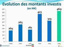 Investissements des fonds français dans les cleantech : 469 M€ en 2014 | capital risque et start-up | Scoop.it