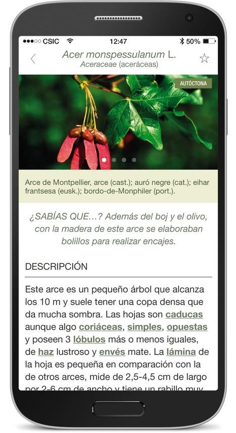 ArbolApp: clasifica los árboles, fácil y seguro. - PROYECTO #GUAPPIS | Geografia de España | Scoop.it