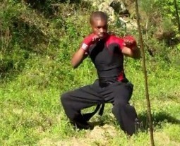 FREE Martial Artist Workout Routine - Rocky Hill (Video) - Martial Artist Workouts & Meditations | Health & Wellbeing | Scoop.it