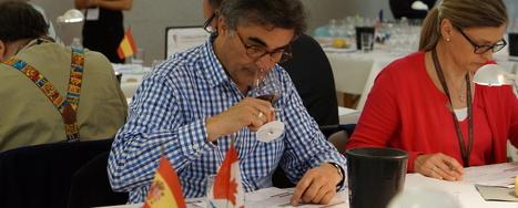 14-16 Mai : Les Citadelles du Vin pour distinguer les meilleurs   Le vin quotidien   Scoop.it