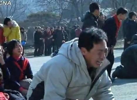 Des torrents de larmes pour Kim Jong-Il | Mais n'importe quoi ! | Scoop.it