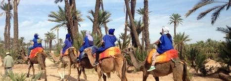 Paseo en dromedario Marrakech   Marrakech Visita Guiada   Tourisme   Scoop.it