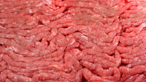 8.7 million pounds of beef products recalled | Freedom and Politics | Scoop.it