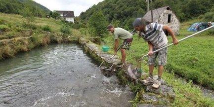 Le wwoofing naît dans les fermes bio de Pyrénées-Atlantiques | Economie Responsable et Consommation Collaborative | Scoop.it