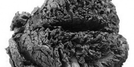 Le secret du cerveau de 4000 ans à l'incroyable état de conservation | Mégalithismes | Scoop.it
