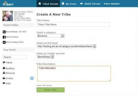 How to make your own Tribe on Triberr #manual /@BerriePelser | WordPress Google SEO and Social Media | Scoop.it