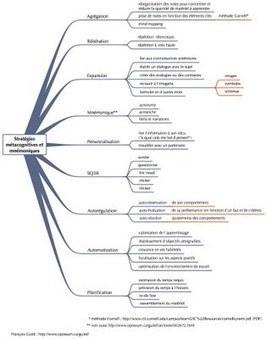 Métacognition - Idées ASH | Pédagogie de la maîtrise et métacognition | Scoop.it