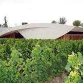 Des milliers d'hectares de vigne détruits dans le Bordelais | Christophe Durand Conseils | Scoop.it