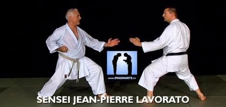 Kihon Karate pour passage de grade [vidéo] - En Terre Martiale | Kamae do Blog | Scoop.it