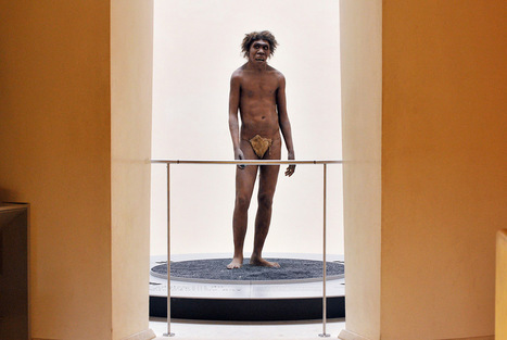 Museum experts say that Neanderthal disappeared due to available brainpower | Art Daily | À la une | Scoop.it