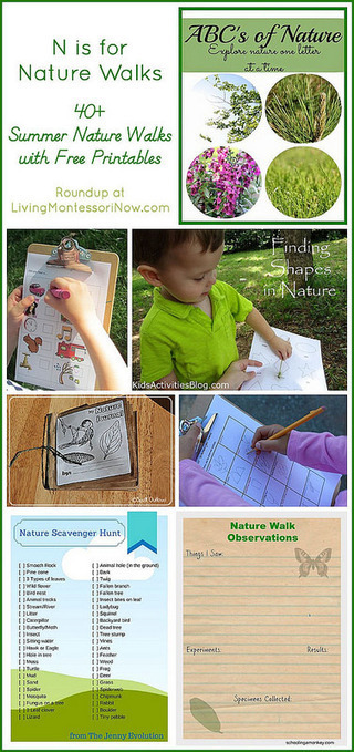 N is for {40+} Nature Walks {with Free Printables} | Montessori Inspired | Scoop.it
