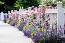 4 Gorgeous Garden Looks for a Narrow Planting Strip | Annie Haven | Haven Brand | Scoop.it