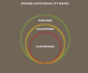 What is strong sustainability? | green infographics | Scoop.it