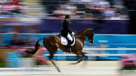 Equestrian Eventing: The Olympics' most dangerous sport? | TIME.com | Equestrian Olympics 2012 | Scoop.it