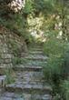 Jardin Sauvage Saint Vincent - Paris.fr | (Culture)s (Urbaine)s | Scoop.it
