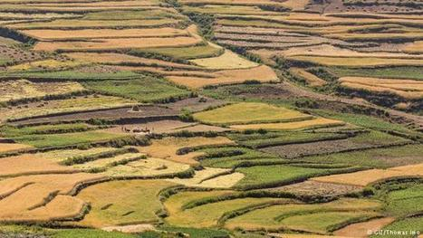 Äthiopien: Die Wüste wird grün | Afrika | Scoop.it