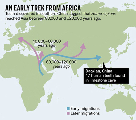 Teeth from China Reveal an Early Human Trek out of Africa | Quite Interesting News | Scoop.it