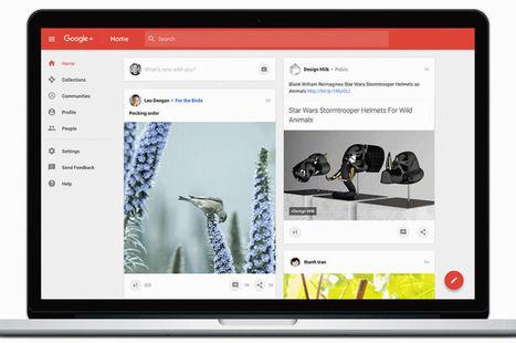 Réseaux sociaux : Google s'obstine avec une nouvelle version de Google +   E-commerce - Réseaux sociaux   Scoop.it
