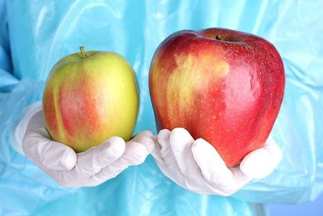 Tell USDA to Reject the GE Apple! | Searching for Safe Foods | Scoop.it