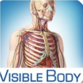 Les meilleures applications d'anatomie : | La revue de presse de Callimedia | Scoop.it
