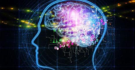 Le cerveau face à lui-même - Le Monde   Cerveau intelligence   Scoop.it