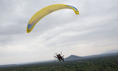 Kenyan conservationist takes bird's-eye view in fight against elephant poaching - The Guardian | Social Media | Scoop.it