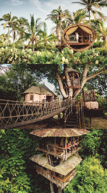 Is the treehouse the pinnacle of sustainable... - eco3tree | Eco Friendly | Scoop.it