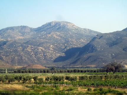 Valle de Guadalupe, Mexico's wine country   Baja California   Scoop.it