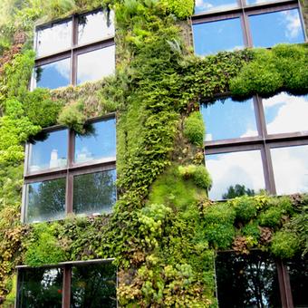 La Nature en ville, un besoin pour les habitants et l'espace urbain | Faire Territoire | Curiosités planétaires | Scoop.it