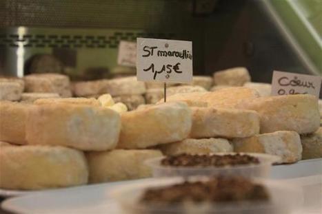Le saint-marcellin: tout un fromage pour un label   The Voice of Cheese   Scoop.it
