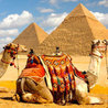 Luxury tour Packages