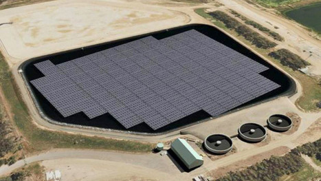 First floating solar plant hopes to change waste energy in Australia | Investing in Renewable Energy | Scoop.it