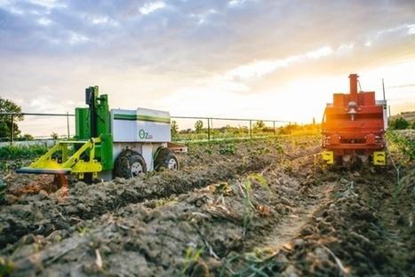 Agriculture : quand les robots se mettent au bio | Une nouvelle civilisation de Robots | Scoop.it