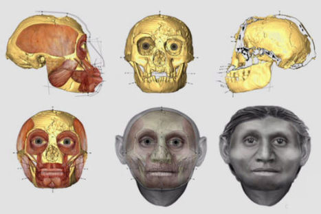 Face-to-Face with Homo Floresiensis | Amazing Science | Scoop.it