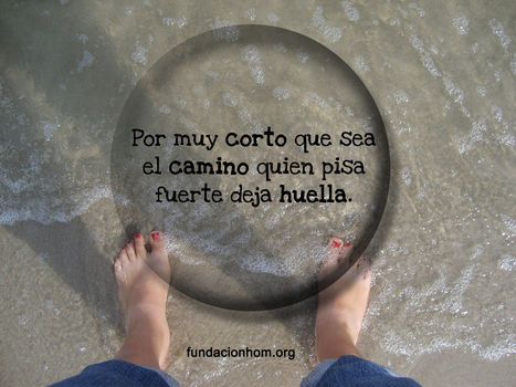 #FotoDelDía   #Frases   Scoop.it