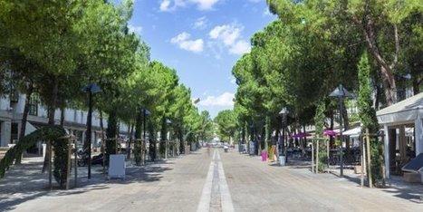 Montpellier fait le pari des écoquartiers | La Ville , demain ? | Scoop.it