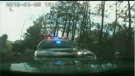 Video: Bulls charge deputies after crash on I-75 | READ WHAT I READ | Scoop.it
